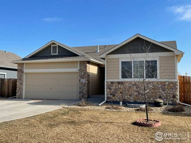 2914 Avocado Ave, Greeley, CO 80631 (MLS #932990) :: Downtown Real Estate Partners