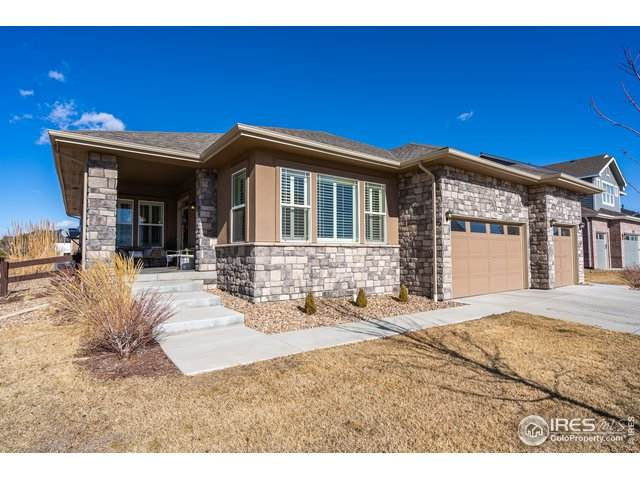 1906 E Seadrift Dr, Windsor, CO 80550 (#932998) :: Realty ONE Group Five Star