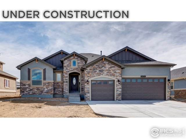 5521 Tullamore Ct, Timnath, CO 80547 (#933513) :: The Griffith Home Team