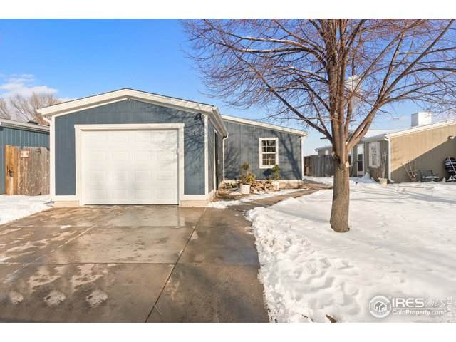 530 11th St, Fort Collins, CO 80524 (MLS #933659) :: 8z Real Estate