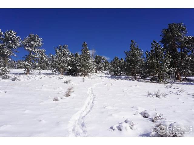 0 Taylor Rd, Lyons, CO 80540 (MLS #933668) :: Downtown Real Estate Partners
