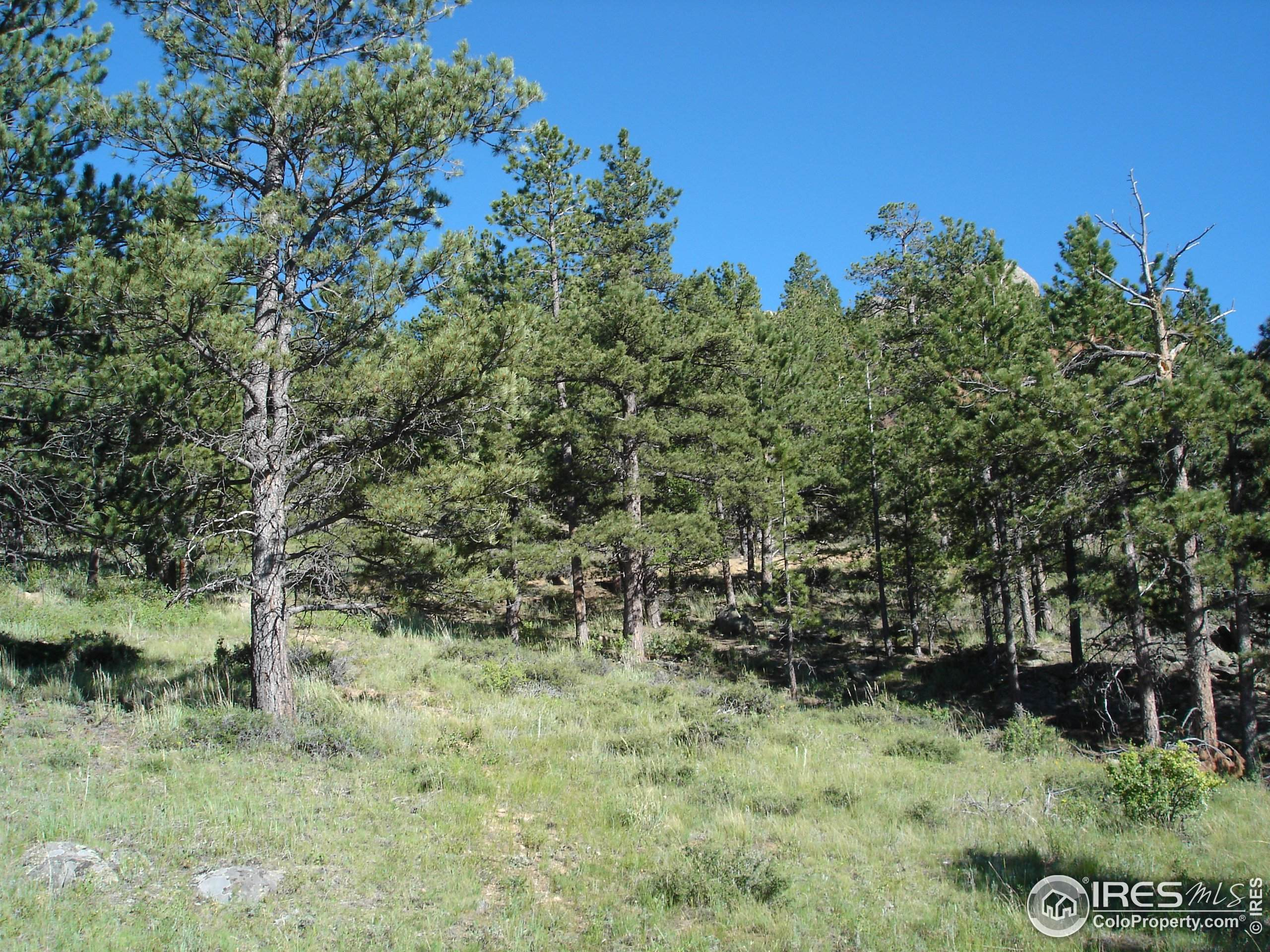 1154 22nd St, Loveland, CO 80537 (MLS #934028) :: Downtown Real Estate Partners