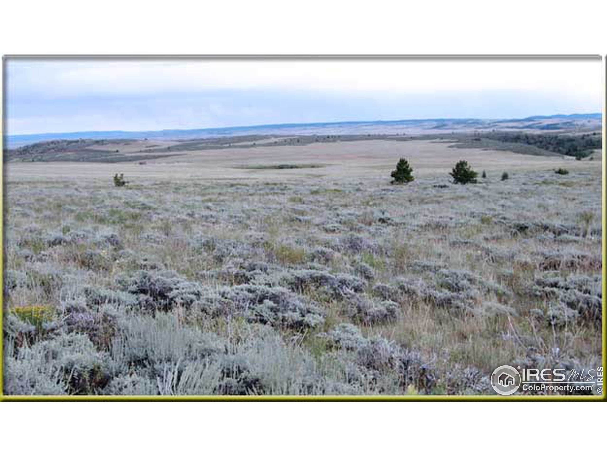 5304 W 5th St, Greeley, CO 80634 (MLS #934264) :: Fathom Realty