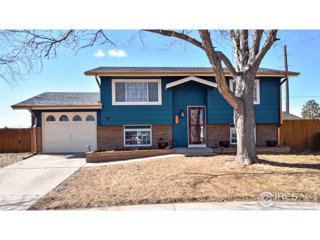 824 Iron Mountain Ct, Windsor, CO 80550 (MLS #934373) :: Downtown Real Estate Partners