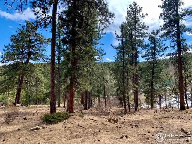 208 Pine Rd, Golden, CO 80403 (#934501) :: HergGroup Denver