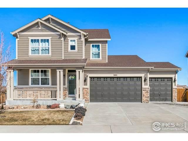 7691 Sabino Ln, Castle Rock, CO 80108 (#934519) :: HergGroup Denver