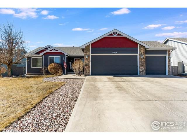 9067 Painted Horse Ln, Wellington, CO 80549 (MLS #934537) :: Wheelhouse Realty