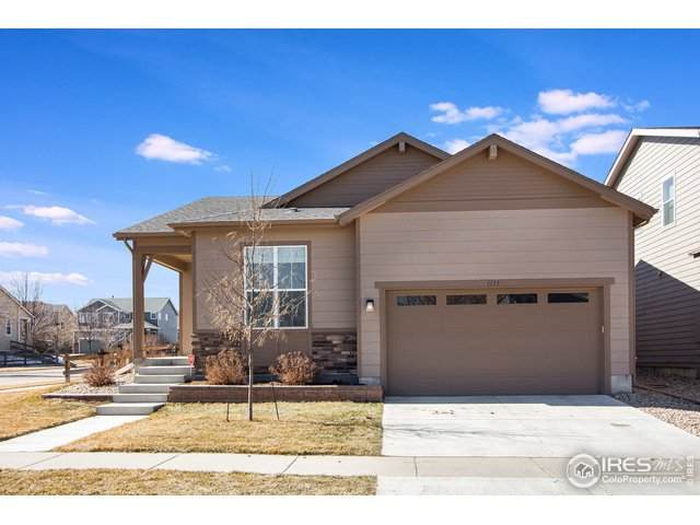 1133 102nd Ave, Greeley, CO 80634 (MLS #934658) :: Downtown Real Estate Partners
