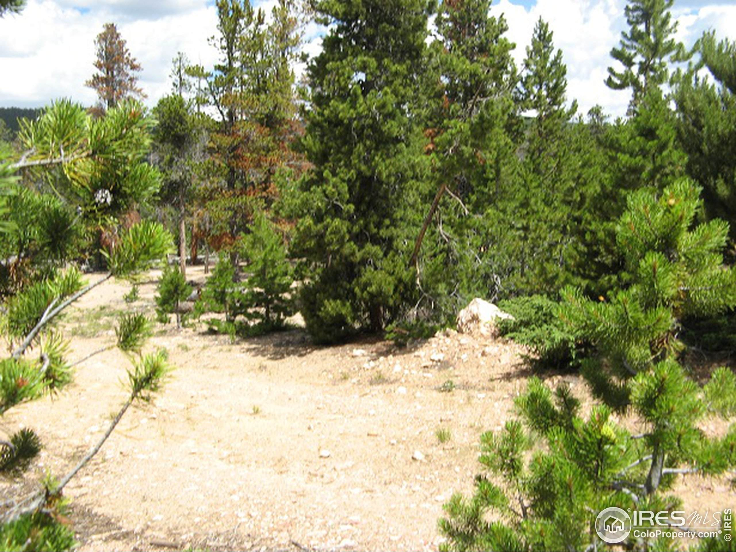 10028 Idalia St, Commerce City, CO 80022 (MLS #934765) :: Downtown Real Estate Partners