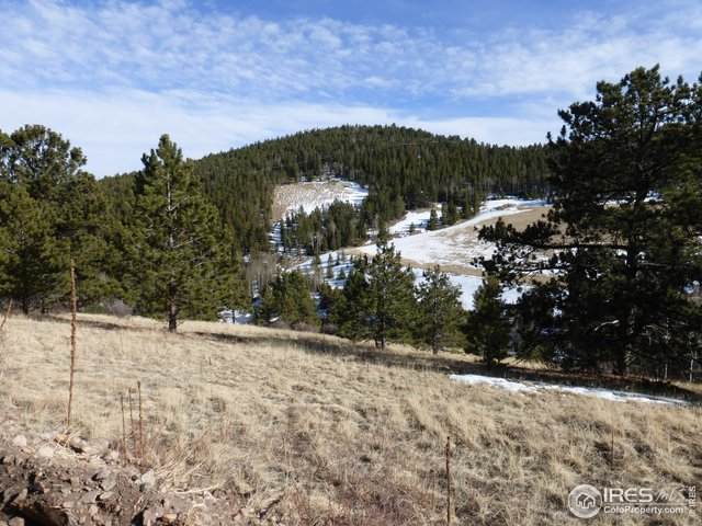 1450 Front Neck Mine Rd, Central City, CO 80427 (MLS #935576) :: Downtown Real Estate Partners