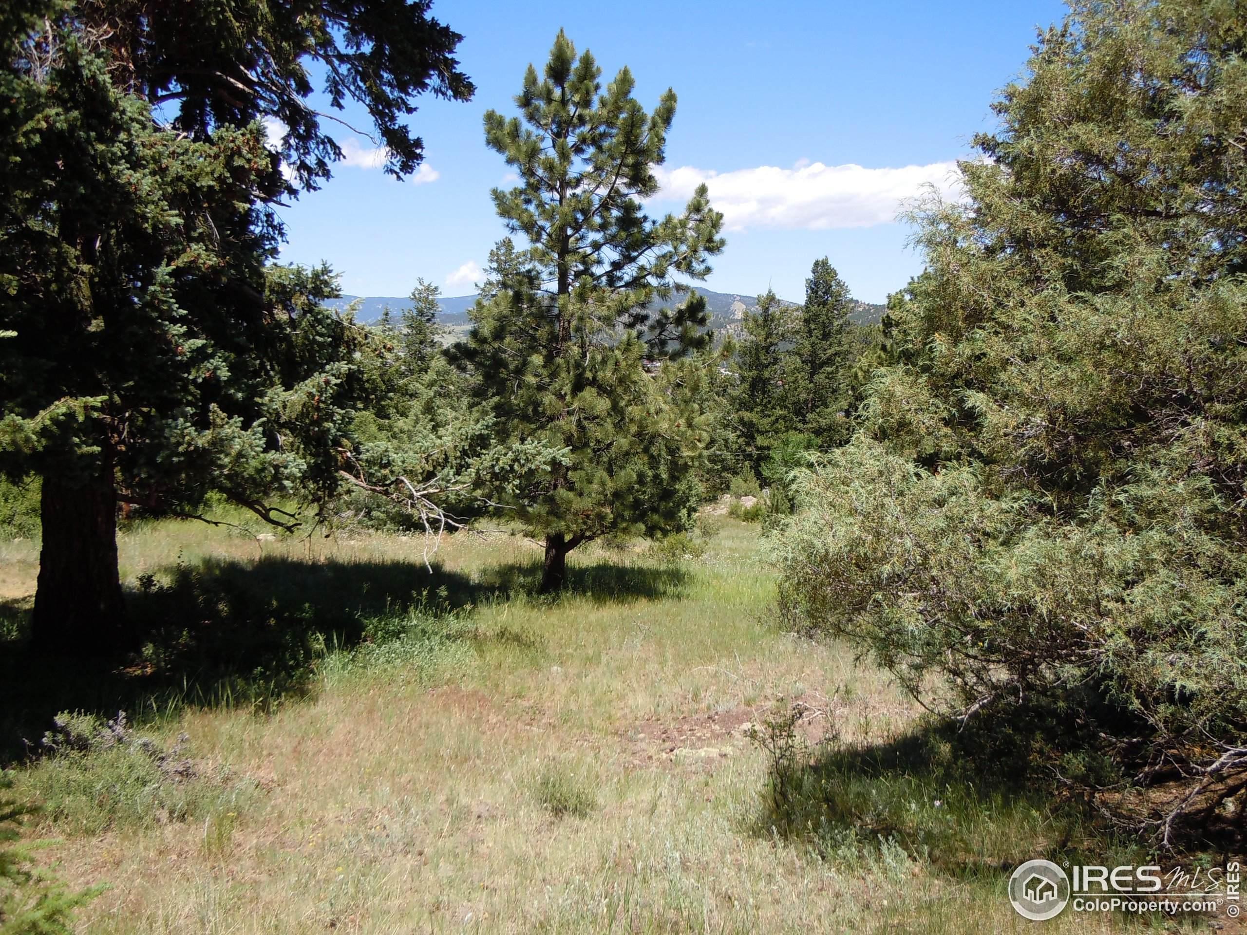 4751 Pleasant Oak Dr A29, Fort Collins, CO 80525 (MLS #935821) :: Jenn Porter Group