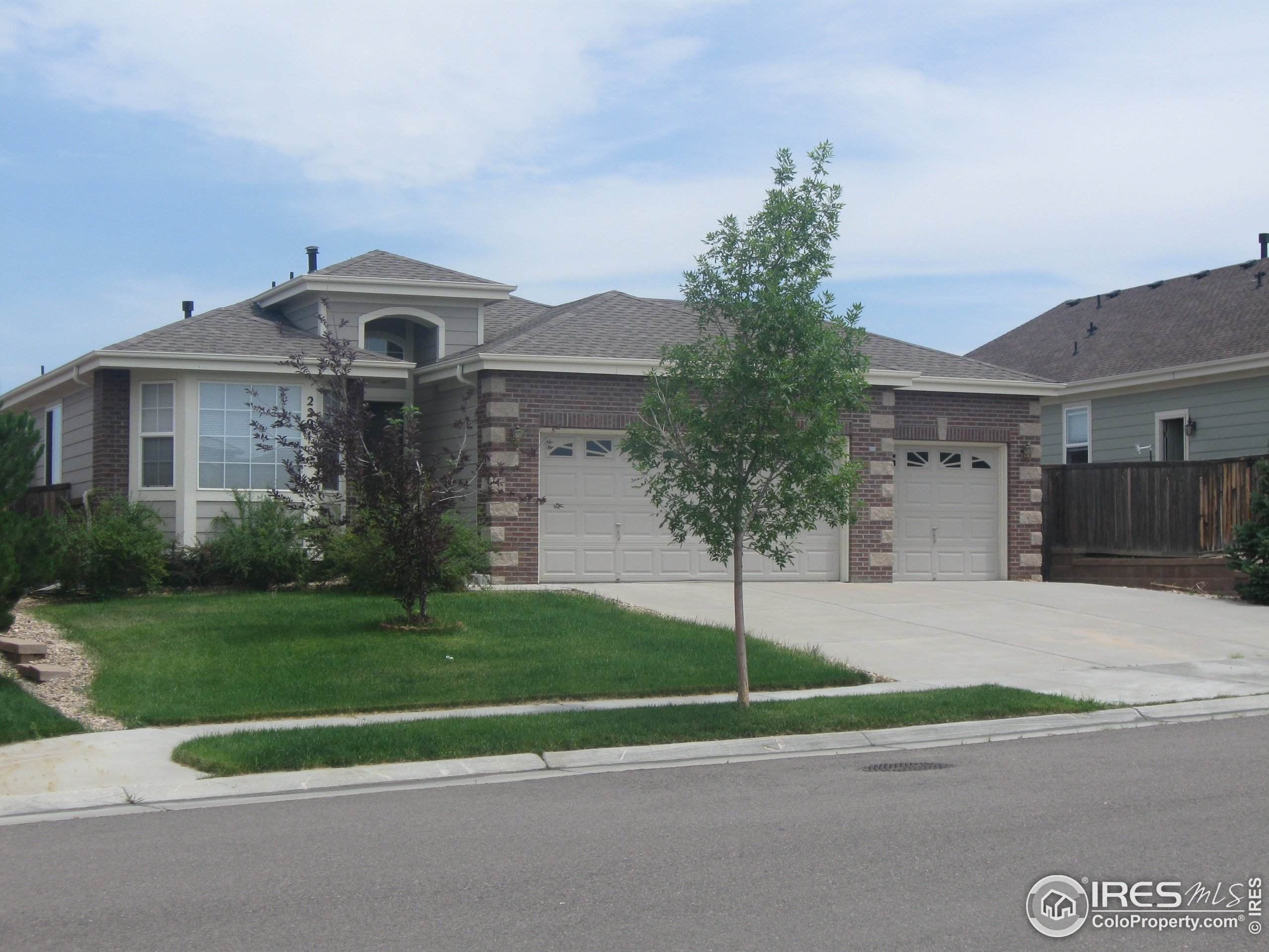 3575 Carbondale St, Loveland, CO 80538 (MLS #936031) :: Downtown Real Estate Partners