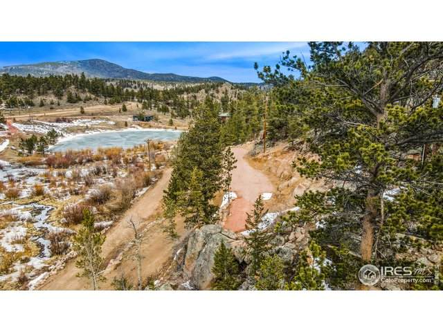 180 Ada Ct, Red Feather Lakes, CO 80545 (MLS #936576) :: Jenn Porter Group