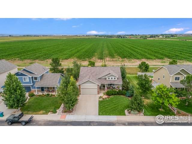 3292 Iron Horse Way, Wellington, CO 80549 (#936909) :: Mile High Luxury Real Estate