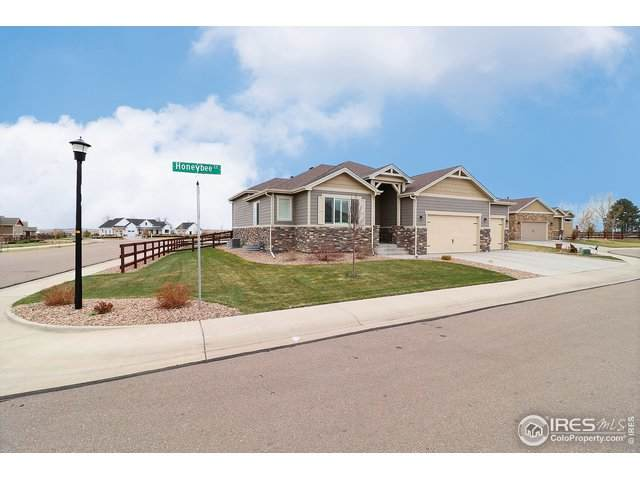 2173 Honeybee Ct, Windsor, CO 80550 (MLS #937614) :: RE/MAX Alliance