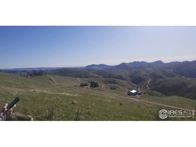 219 Horse Mountain Dr, Livermore, CO 80536 (MLS #937967) :: RE/MAX Alliance