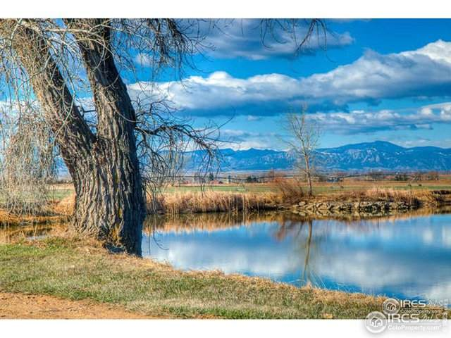 2671 Grace Way, Mead, CO 80542 (#937988) :: Re/Max Structure