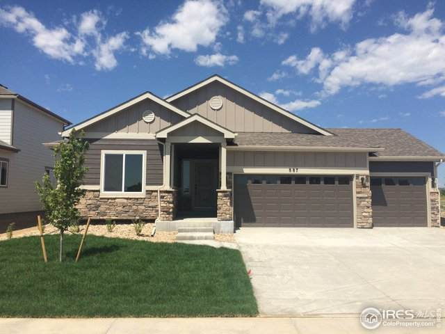 1664 Marbeck Dr, Windsor, CO 80550 (#938207) :: My Home Team