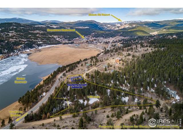 112 Switzerland Trl, Nederland, CO 80466 (MLS #939163) :: Jenn Porter Group