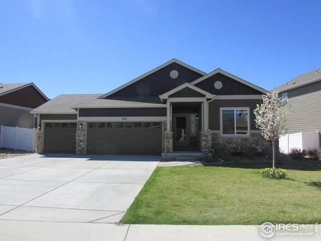 516 Boxwood Dr, Windsor, CO 80550 (#939214) :: Mile High Luxury Real Estate