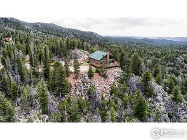 107 Piegan Ct, Red Feather Lakes, CO 80545 (MLS #939217) :: Kittle Real Estate