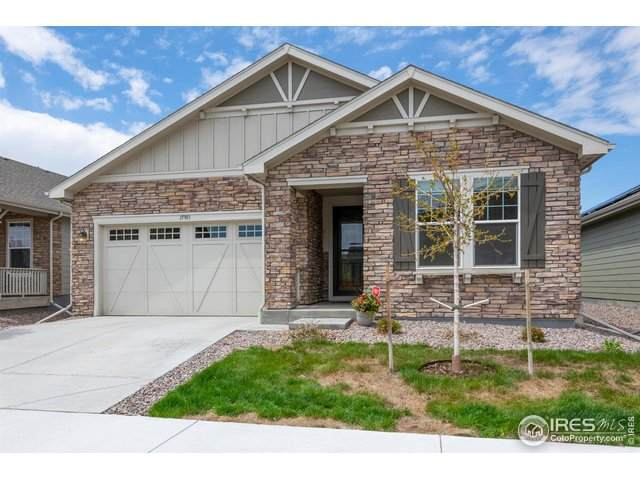 15903 Fillmore St, Thornton, CO 80602 (#939484) :: My Home Team