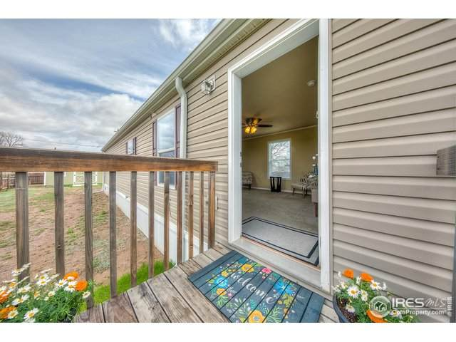 449 Spencer Ave, Pierce, CO 80650 (#939669) :: Kimberly Austin Properties