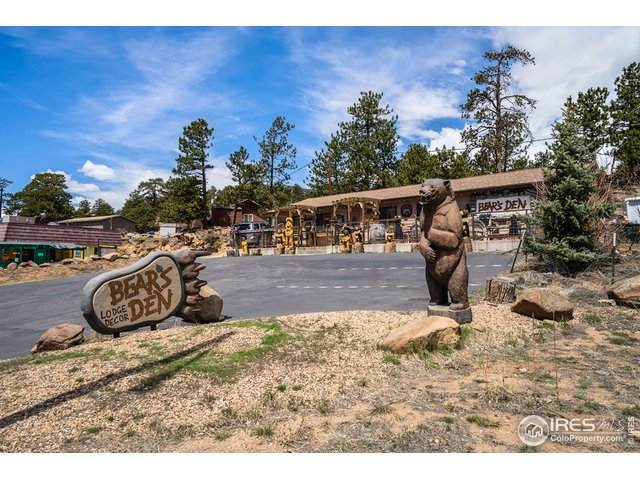 857 Moraine Ave, Estes Park, CO 80517 (MLS #939858) :: Tracy's Team