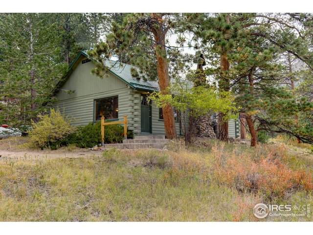 1051 Ramshorn Rd, Estes Park, CO 80517 (MLS #939914) :: Downtown Real Estate Partners
