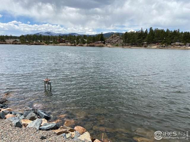 0 Hiawatha Way, Red Feather Lakes, CO 80545 (MLS #939951) :: Colorado Home Finder Realty
