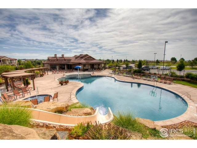 4153 Prestwich Ct, Timnath, CO 80547 (#940125) :: Mile High Luxury Real Estate