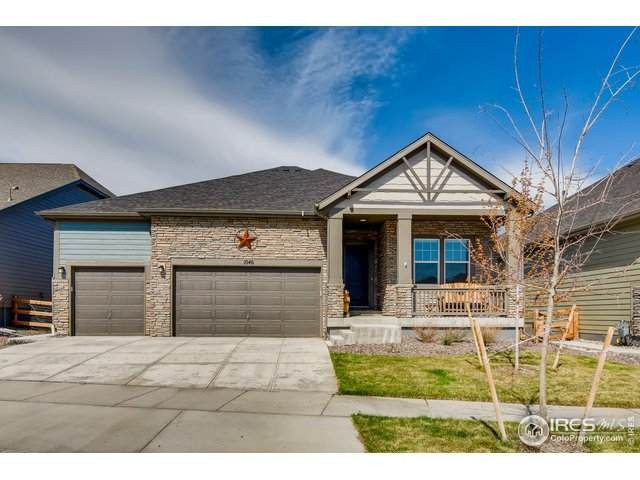 1046 Marfell St, Erie, CO 80516 (MLS #940336) :: 8z Real Estate