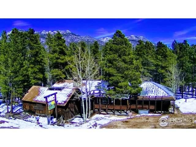 9889 Peak To Peak Highway, Allenspark, CO 80510 (MLS #940388) :: RE/MAX Alliance