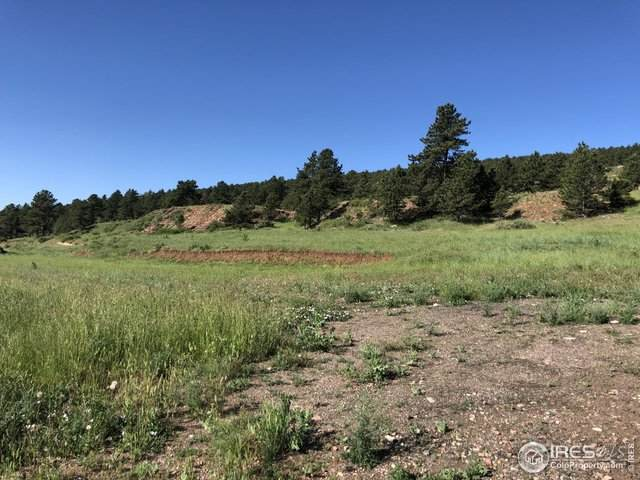 2853 Stone Canyon Rd, Lyons, CO 80540 (MLS #941674) :: RE/MAX Alliance