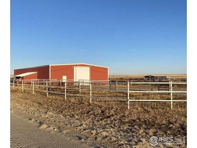 17961 County Road T T, Rush, CO 80833 (MLS #941680) :: Wheelhouse Realty