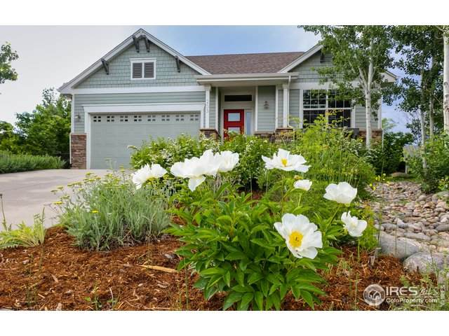 203 Mcconnell Ct, Lyons, CO 80540 (MLS #943097) :: 8z Real Estate