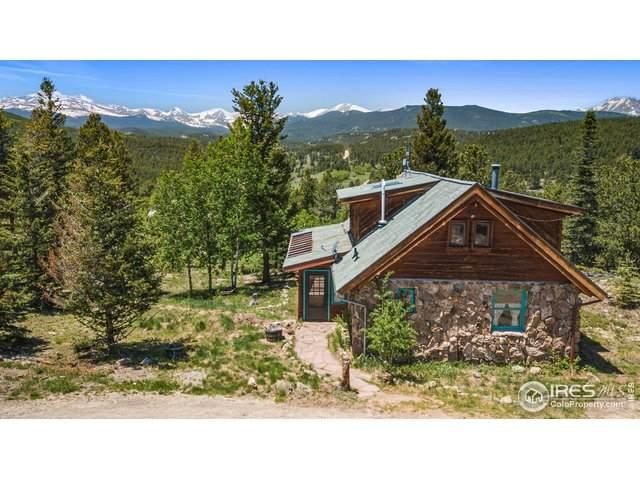 600 Rock Lake Rd, Ward, CO 80481 (MLS #943124) :: Kittle Real Estate