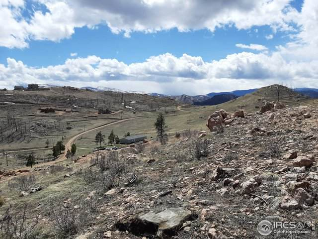 Meadow Mountain Dr, Livermore, CO 80536 (#943181) :: Re/Max Structure