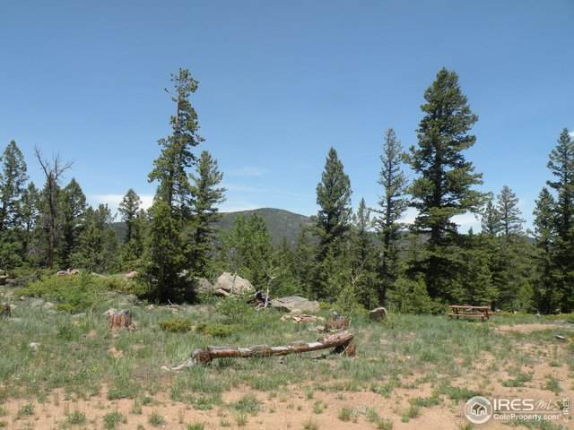 5229 N County Road 73C, Red Feather Lakes, CO 80545 (MLS #943190) :: The Sam Biller Home Team