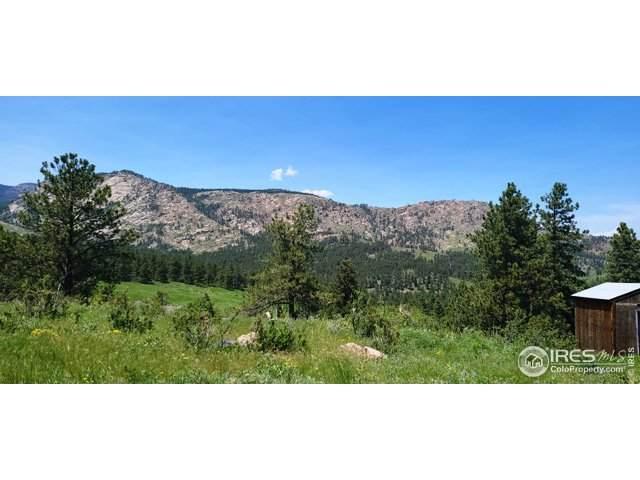 1001 Snow Top Dr., Drake, CO 80515 (#943246) :: Mile High Luxury Real Estate