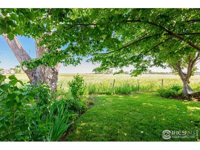 1034 Blue Spruce Dr, Loveland, CO 80538 (MLS #943312) :: 8z Real Estate