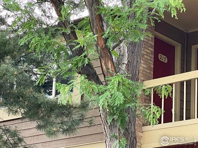 3000 Colorado Ave #217, Boulder, CO 80303 (MLS #943313) :: Wheelhouse Realty