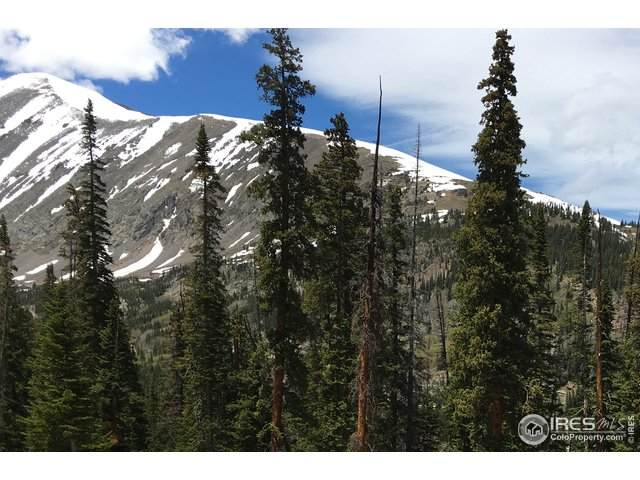 585 Quandary View Dr, Breckenridge, CO 80424 (MLS #943323) :: Colorado Home Finder Realty
