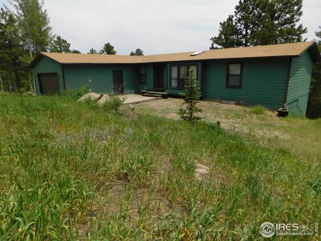182 Pine Rd, Golden, CO 80403 (MLS #943349) :: Downtown Real Estate Partners
