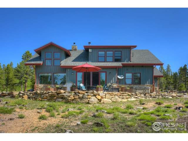 719 County Road 120, Nederland, CO 80466 (MLS #943510) :: Downtown Real Estate Partners