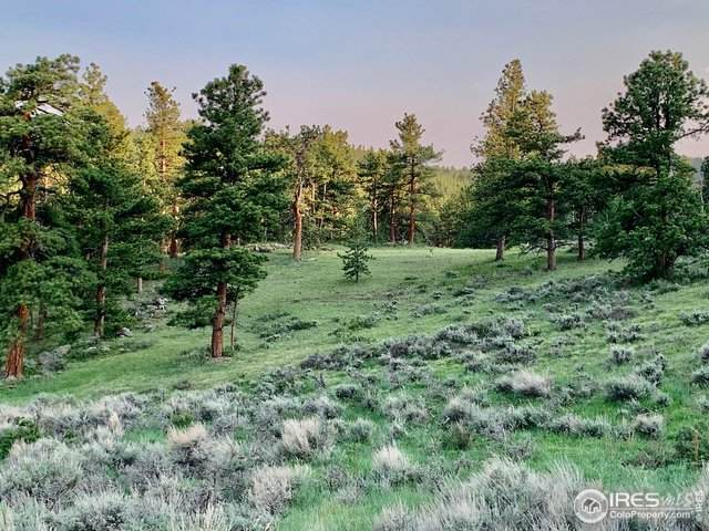1018 Beartrap Rd, Red Feather Lakes, CO 80545 (MLS #943665) :: Kittle Real Estate