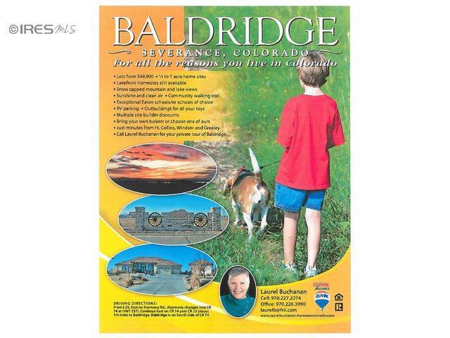 2128 Blue Ridge Dr, Severance, CO 80615 (MLS #671814) :: 8z Real Estate