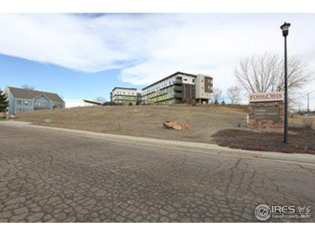 100 Coronado Ct, Fort Collins, CO 80525 (MLS #683795) :: The Daniels Group at Remax Alliance