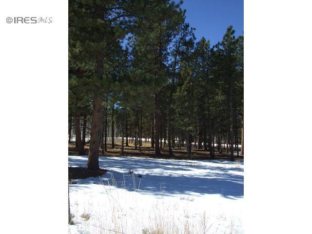 1148 Ptarmigan Dr, Woodland Park, CO 80863 (MLS #701664) :: 8z Real Estate