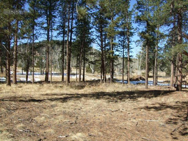 1190 Ptarmigan Dr, Woodland Park, CO 80863 (MLS #701679) :: 8z Real Estate